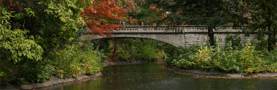 Forest Home Cemetery - Bridge over Water